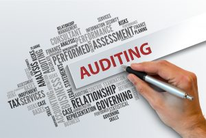 Tag cloud with Auditing and Hand with pen