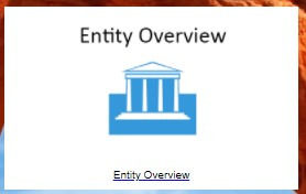 Entity Overview Icon